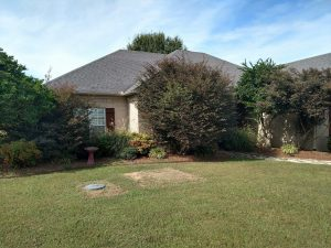 conway-ar landscaping services